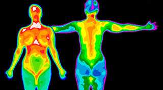 Thermogram of Women and Men