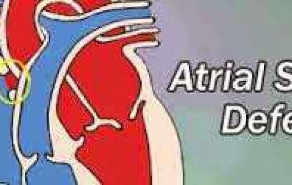 ASD (1) နှလုံးအပေါက် (၁)